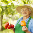 Woman holding tomatoes and yellow peppe — Stock Photo