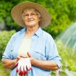Senior farmer — Stock Photo