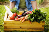Box filled fresh vegetable — Stockfoto