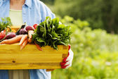Senior woman holding box with vegetables — Stok fotoğraf