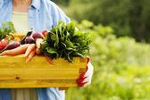 Sênior mulher segurando a caixa com legumes — Foto Stock