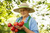 Senior woman holding tomatoes — Stock Photo