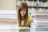 Library study — Stock Photo