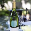 White wine bottle — Stock Photo #23323160