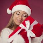 Holiday dream — Стоковое фото #30263457