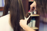 Long hair cut — Foto de Stock