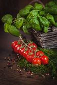 Tomatoes between green herbs — Stock Photo