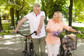 Mature couple walking at park — Stockfoto
