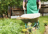 Man pushing metal wheelbarrow — Stock Photo
