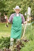 Farmer with ripe beet — Stock Photo