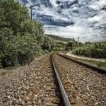 Постер, плакат: Rail tracks Rolica Portugal