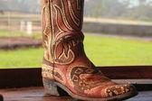 Paniolo Cowboy Boot — Stock Photo