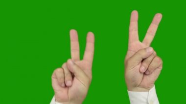 Hand sign: The symbol of victory. Alpha channel is included. — Stock Video