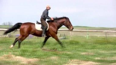 Horseman jamps — Stock Video