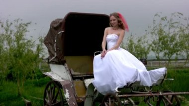 Bride and coach — Stock Video