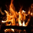 Stock Video: Blaze burning fire