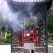 Chinese Incense — Stock Video #23650245