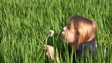 Girl, dandelion and grass — Stock Video