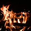 Blaze burning — Stock Video