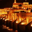 Cordoba. Roman bridge — Stock Video