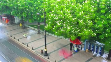 Rain on the Street of Istanbul and Flowering Chestnuts. Timelapse — Stock Video