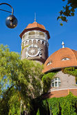 Water tower - the symbol of the city Svetlogorsk (until 1946 Rauschen). Kaliningrad oblast, Russia — Стоковое фото
