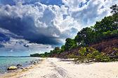 Beautiful sandy beach and Cumulus clouds — Stock Photo