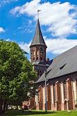 Cathedral of Koenigsberg on Kneiphof island. Gothic, 14th century — Stock Photo