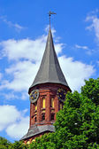 Tower Koenigsberg Cathedral. Gothic 14th century. Symbol of Kaliningrad (Koenigsberg before 1946), Russia — Stock Photo