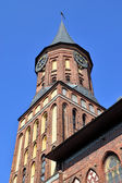 Tower Koenigsberg Cathedral. Symbol of Kaliningrad (formerly Koenigsberg), Russia — Stock Photo