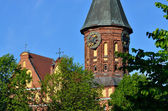 Tower Cathedral of Koenigsberg. Kaliningrad (formerly Koenigsberg), Russia — Stock Photo