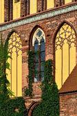 Koenigsberg Cathedral, facade fragment — Foto Stock
