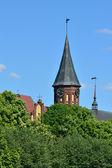 Catedral de königsberg en la isla kneiphof. kaliningrad, rusia — Foto de Stock