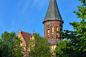Koenigsberg Cathedral on the Kneiphof island. Kaliningrad (formerly Koenigsberg), Russia — Stock Photo
