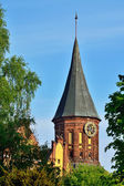 Tower Koenigsberg Cathedral. Symbol of Kaliningrad, Russia — Stock Photo