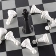 Stock Photo: Black King and White Pawns