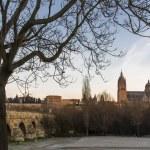 City of Salamanca, Spain — Stock Photo