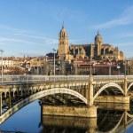 City of Salamanca, Spain — Stock Photo #45359483