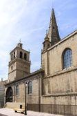 """""""Santa Maria de Palacio"""" Church, in Logrono. Spain. — Stockfoto"""