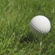 Golf ball — Stock Photo #21677649