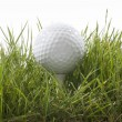 Golf ball — Stock Photo #40144093