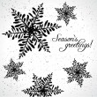 Seasons greetings card  — Imagen vectorial