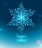 Ice Seasons greetings card — Stock Vector