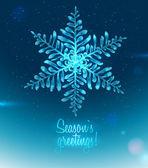 Ice Seasons greetings card — Stock Vector