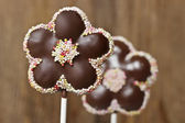 Chocolate cake pops in flower shape — Stock Photo