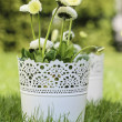 Fresh spring decorations for the First Communion, or First Holy  — Stock Photo