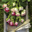Garden party decor. Bouquet of pink roses — Stockfoto