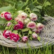 Garden party decor. Bouquet of pink roses on wicker tray — Stockfoto