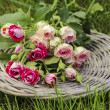 Garden party decor. Bouquet of pink roses on wicker tray - Stock Photo