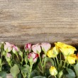 Wooden surface with copy space decorated with colorful roses — Stock Photo